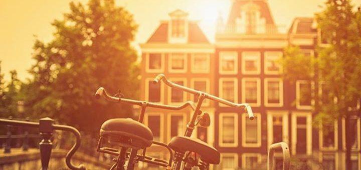 Você é brasileiro? Quer estudar na Holanda?